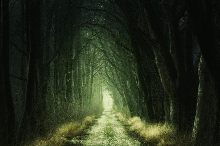 Ritual abre camino