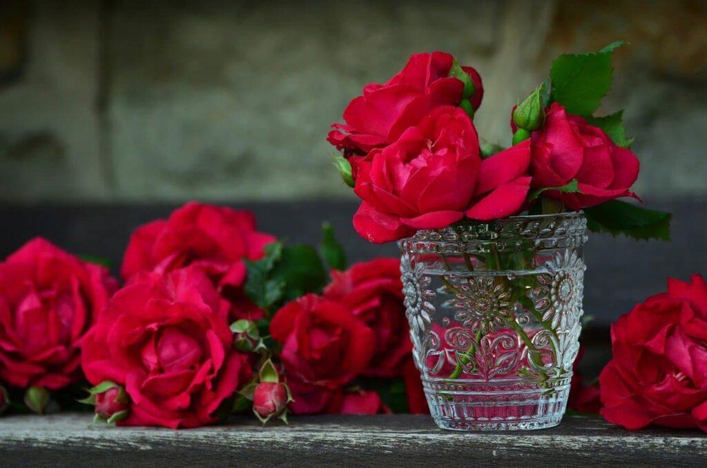 Baño de rosas para embellecer los párpados