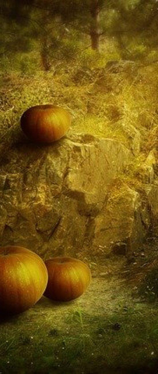 Ritual atraer el amor en halloween